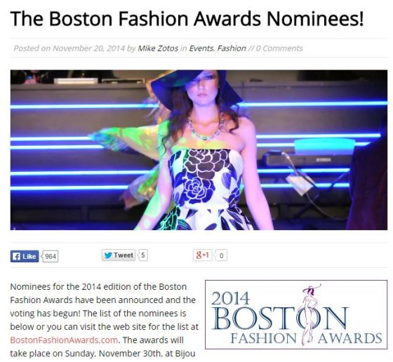 Alisa nominated for a 2014 Boston Fashion Award for Best Wardrobe Stylist.